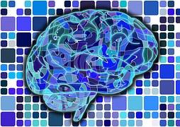 brain-951845__180.jpg