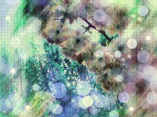 flower-tree-1520318_960_720.jpg