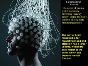 meditation-changes-brain-10-638.jpg
