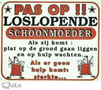 schoonmoeder-10915_1464339973_750xn.jpg